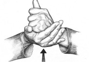 sign-language_help_800x600-590x410